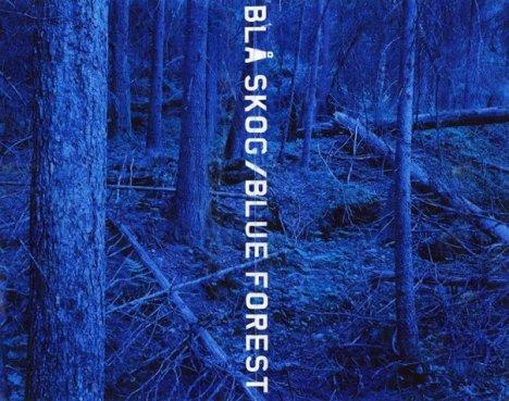 Blåskog3