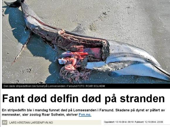 Døddelfin